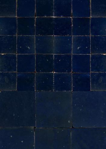 Donkerblauwe zelliges