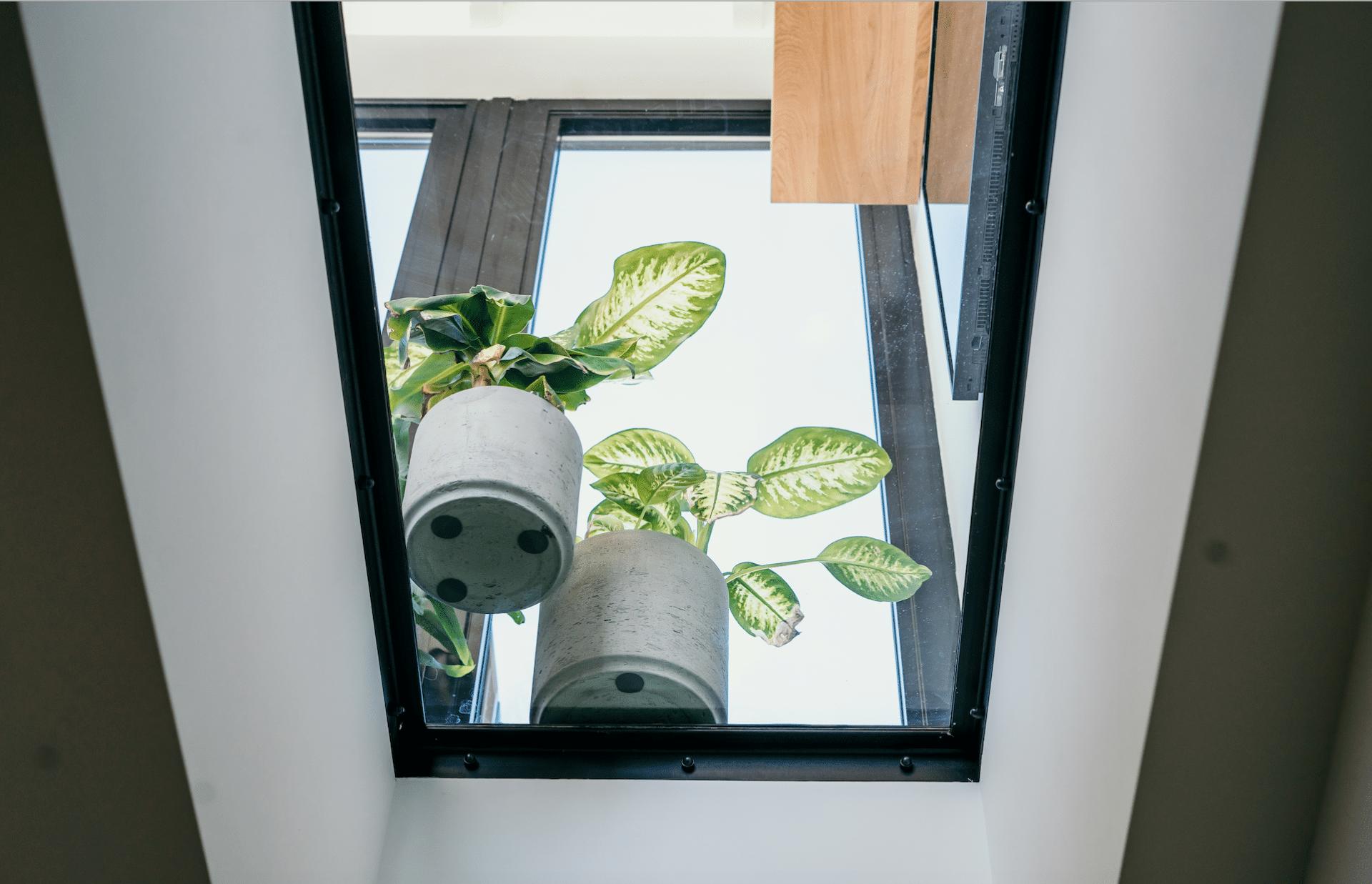 Glazenvloer met zwart stalen frame